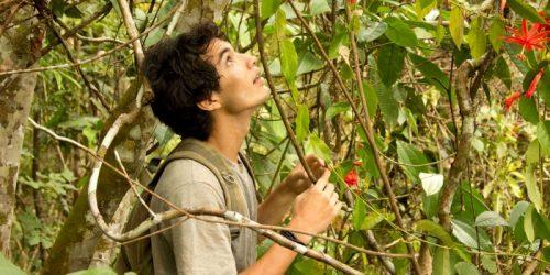 'A Floresta de Jonathas' será exibido no Canal Brasil em agosto