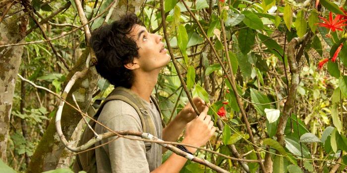 A Floresta de Jonathas, de Sérgio Andrade