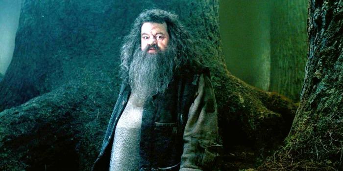 Ator de Harry Potter está hospitalizado nos EUA