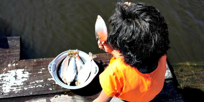 Cinema no Amazonas em 2015: Izis Negreiros e o universo infantil