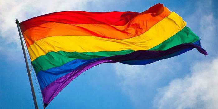 Fox elabora filme sobre decisão para legalizar casamento gay nos EUA