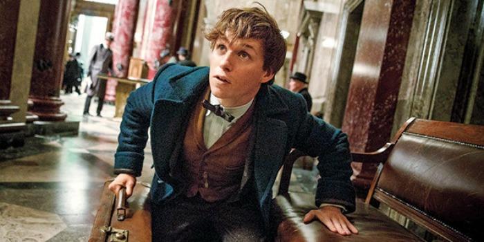 J.K Rowling inicia trabalhos do roteiro do terceiro filme de 'Animais Fantásticos'
