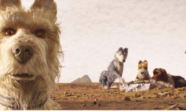 'Ilha de Cachorros': Wes Anderson refina ainda mais estilo em divertida animação
