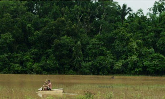 'Sons do Igarapé': bonito curta entre o poético e o natural das relações amorosas