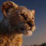 'O Rei Leão': o mais inútil entre os inúteis filmes de 2019