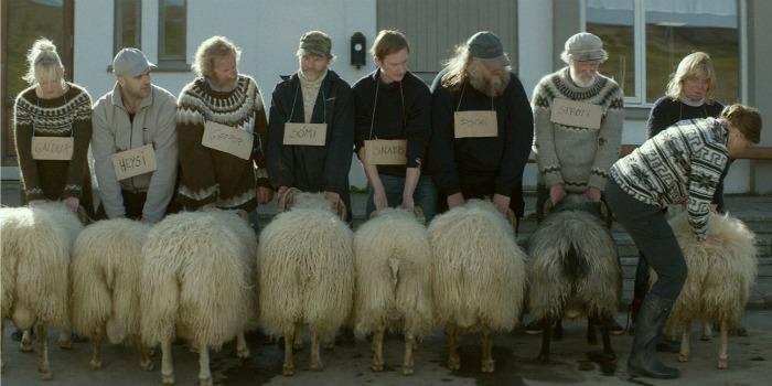 Filme islandês sobre criadores de ovelhas vence prêmio em Cannes