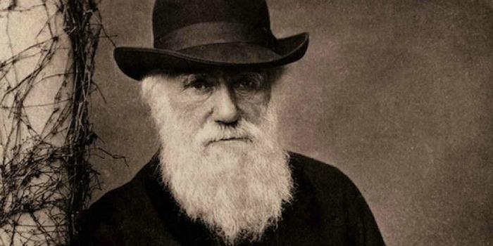 Estúdio Disney vai realizar um filme de aventura sobre Charles Darwin