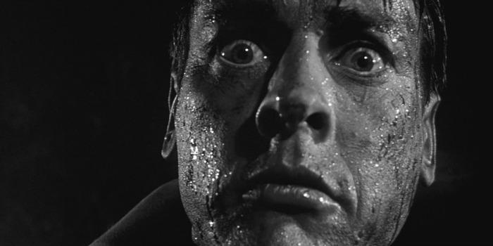 Invasores de Corpos – Os subversivos alienígenas devoradores de identidade no cinema