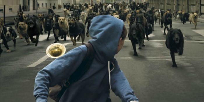 'Deus Branco': vira-lata como símbolo da opressão