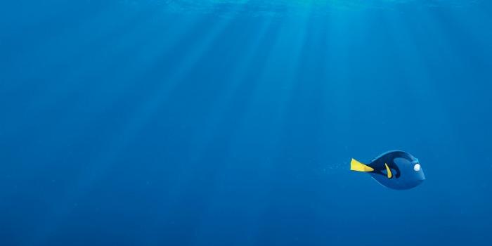 'Procurando Dory' chega a US$ 1 bilhão e se torna a 5ª animação de maior bilheteria