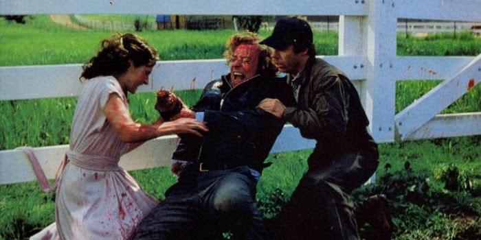 'A Mão' (1981): quando o trash vira um eficiente horror psicológico