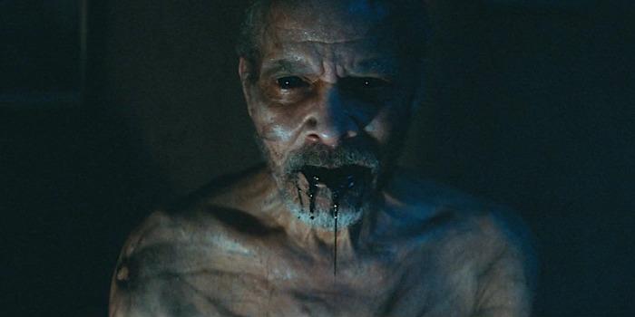 'Ao Cair da Noite': suspense retrata apocalipse do homem ao lutar pela sobrevivência
