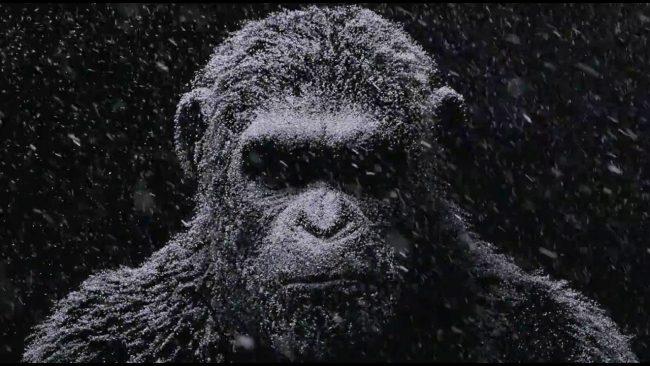 Novo 'Planeta dos Macacos' alerta para ideologias supremacistas, diz Andy Serkis