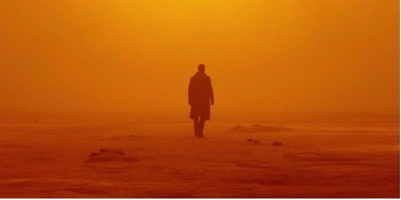 Oscar 2018: Roger Deakins conquista primeiro Oscar da carreira com 'Blade Runner'
