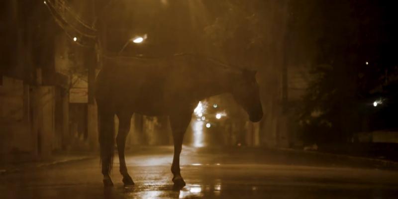 'Cavalo': resistência negra em potente obra alagoana